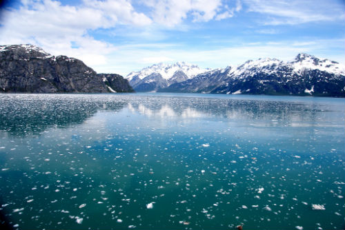 1 Glacier Bay