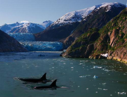 2 Alaskan Fjord