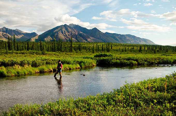 alaska fly fishing expedition case study